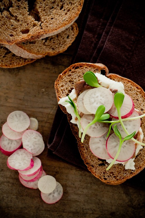 french radish and sunflower sprout tartines post image