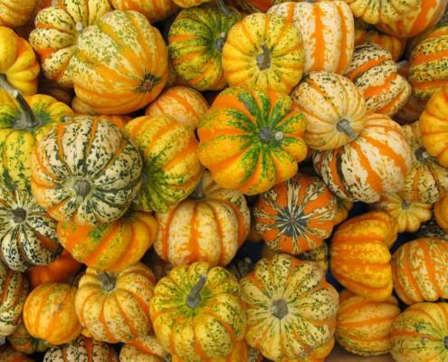PumpkinFest2