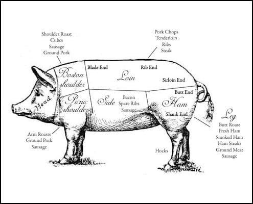 Pig Meat Chart on from a pig cuts of meat