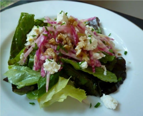 Chioggia beet and fennel salad - Italiaoutdoorsfoodandwine bike tours italy