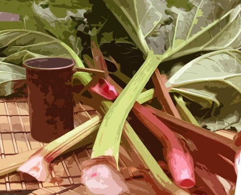 rhubarb c egbert