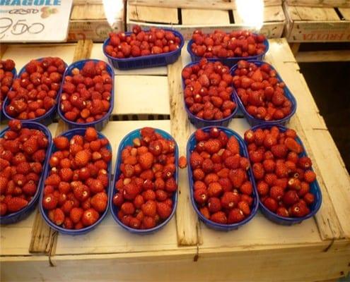 wild strawberries cycling dolomites italiaoutdoorsfoodandwine