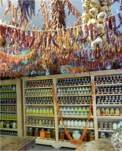 conserves in bassano bike wine tour italiaoutdoorsfoodandwine