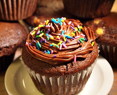 Double Chocolate Muffins – Honest Cooking