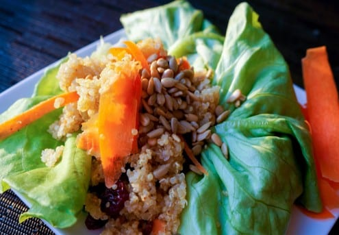 Cranberry Quinoa Crunch Lettuce Wraps
