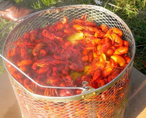 A Bonafide Louisiana Crawfish Boil