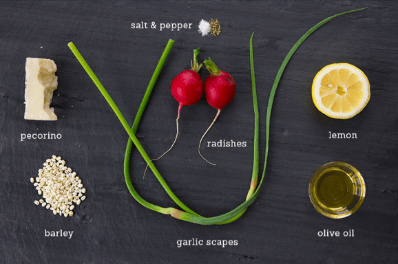 Barley Salad with Radishes and Garlic Scapes