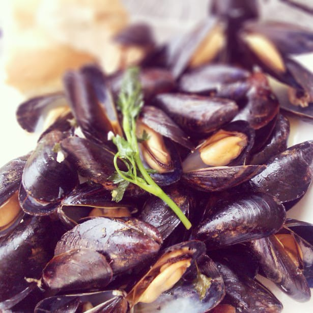 Honest Mussels Recipes — Dishmaps