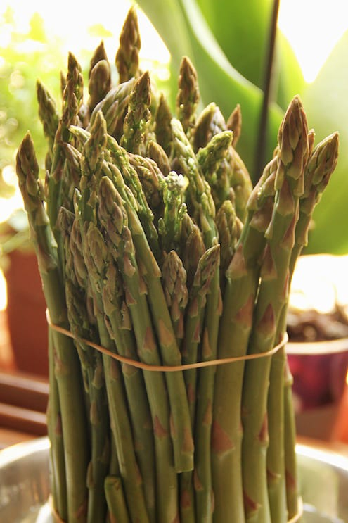 Loving Asparagus - 4 Ways