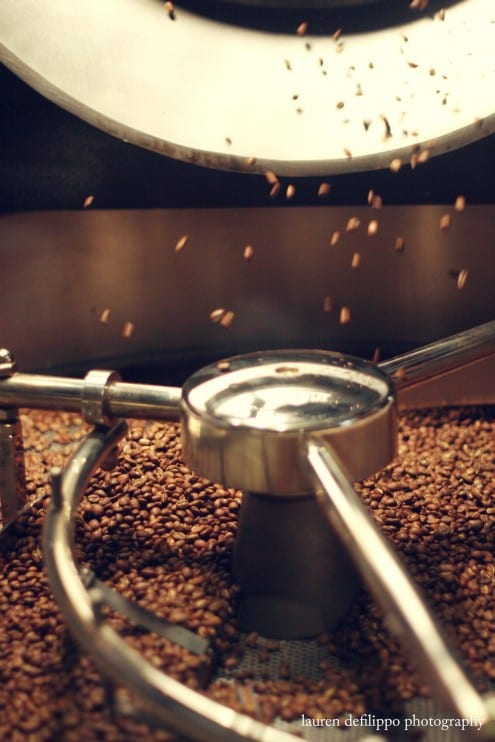 Freshly roasted beans falling from the barrel of Toby's Probat machine.