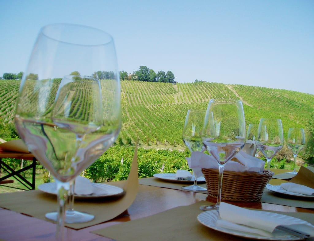 Three Excellent Summer Wines