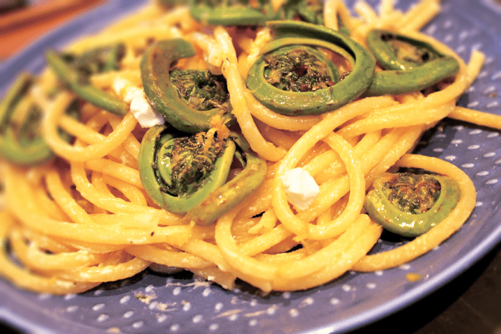 Creamy Sauteed Fiddleheads over Bucatini