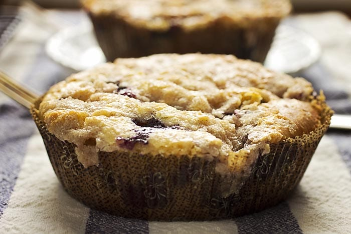 Gluten-Free Blueberry Coffee Cakes