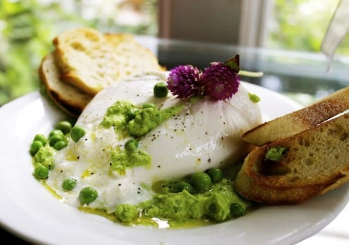 Burrata with Minty Pea Pesto Bruschetta