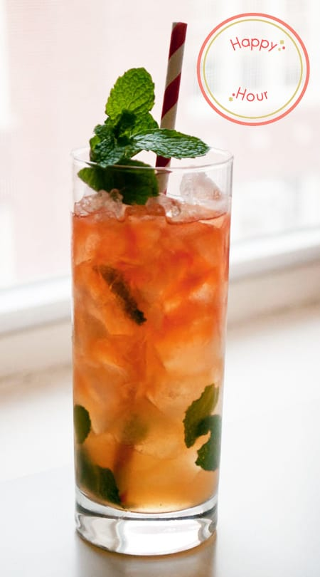 Queen's Park Swizzle Recipe by Katherine Sacks