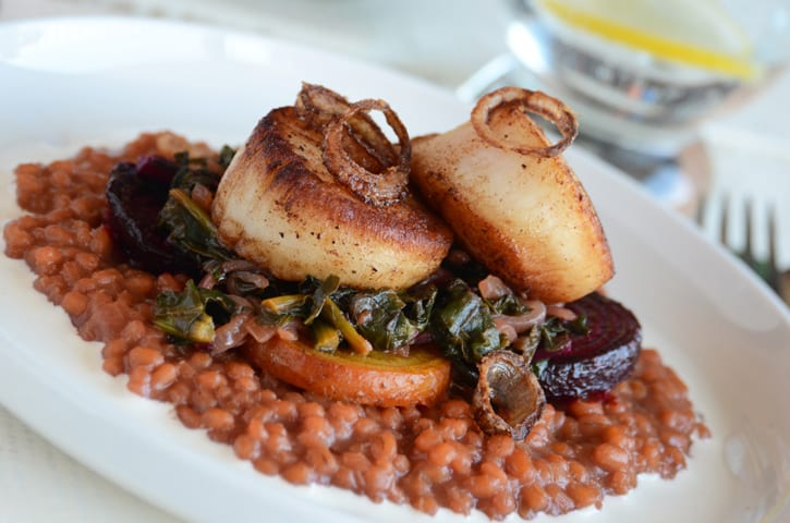 Seared Scallops with Barley Risotto and Beets recipe