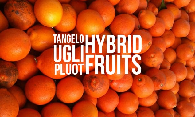 Whats A Tangelo 5 Fruit Hybrids You Should Try