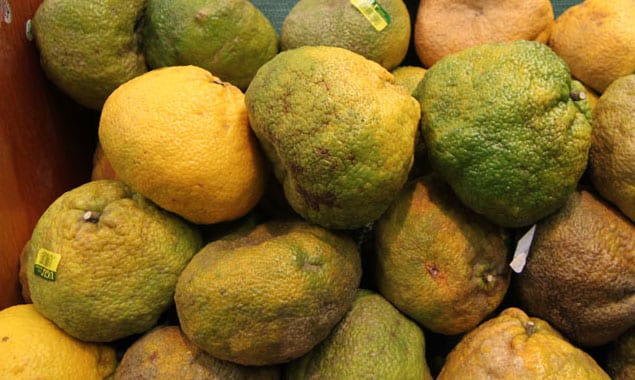 Ugli fruit_farmfresh
