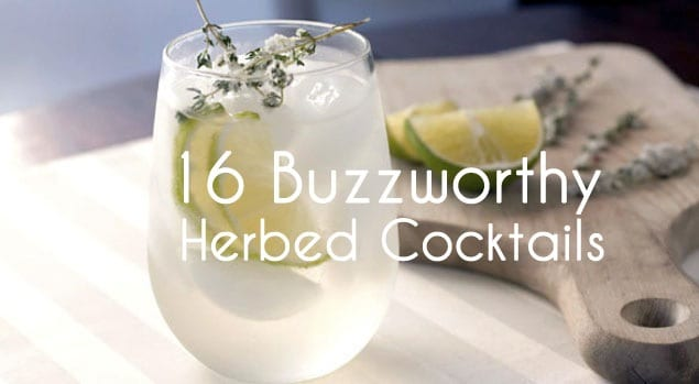 herbed cocktails