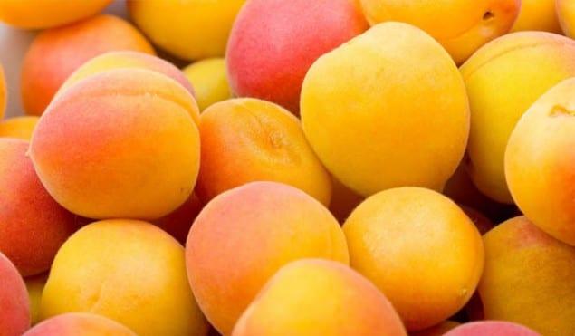 apricots-635x371