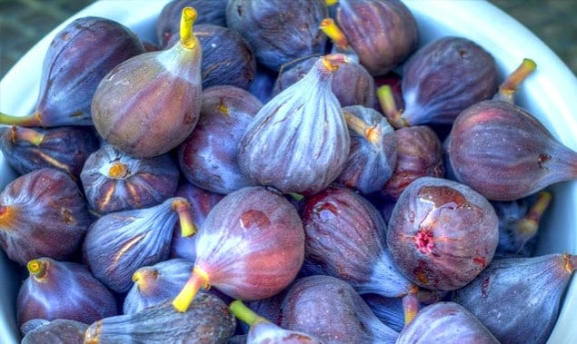 figs-11-635x379