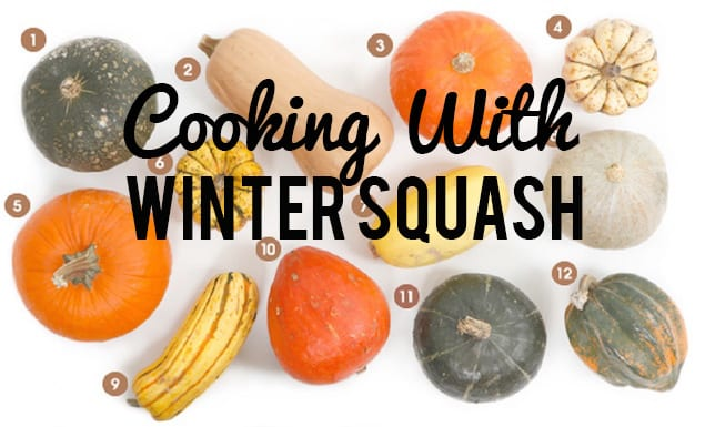 visual-guisde-winter-squash_612-1