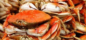 area-info-dungeness-crab-03