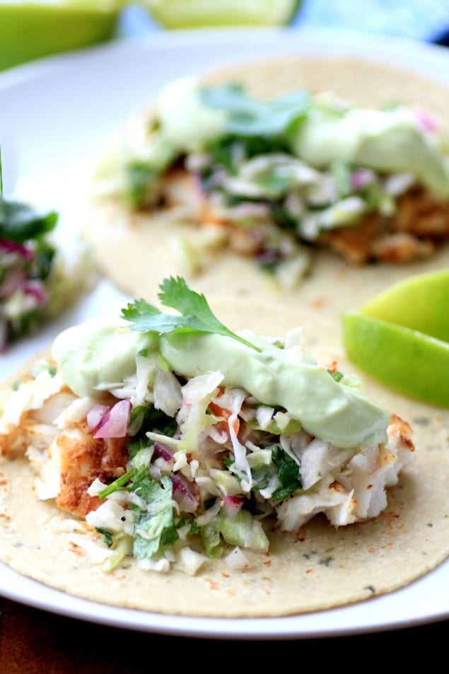 Crispy fish tacos with avocado sauce and cilantro slaw for Fish tacos with coleslaw