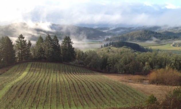 winery-635x474
