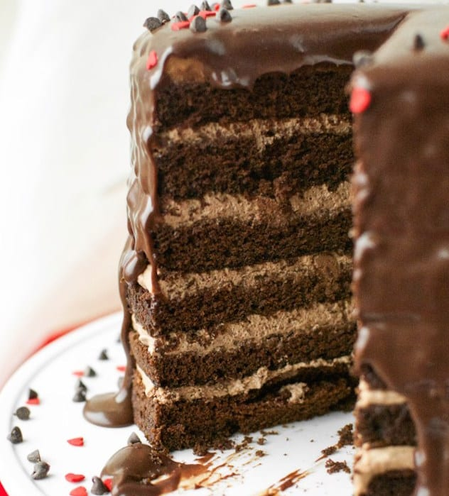 Cake With Chocolate Mousse : Twelve Layer Chocolate Cake Plus Ganache   Honest Cooking