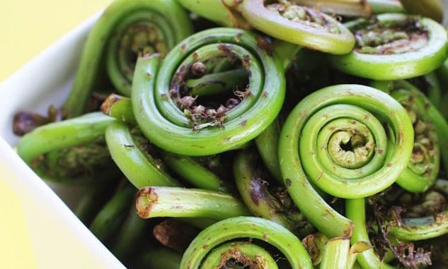 fiddlehead-ferns-recipe-1