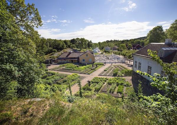 Köksträdgård_foto Asa Dahlgren