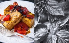 Tofu-Balsamic