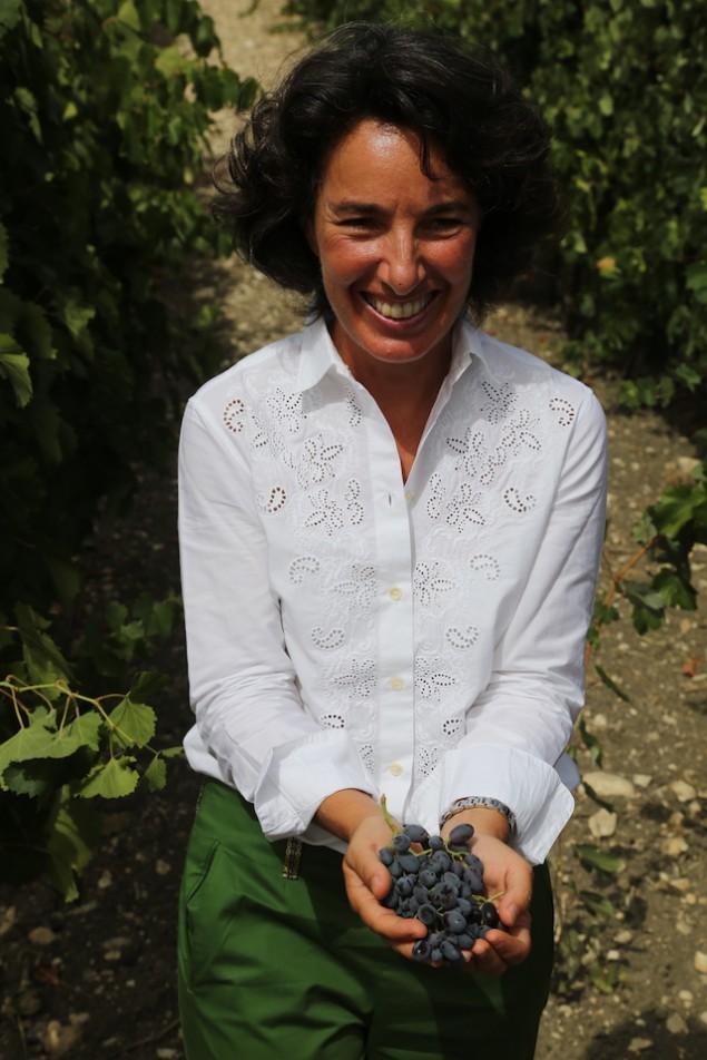 La Vendemmia: Defining Italian Wine Vintages