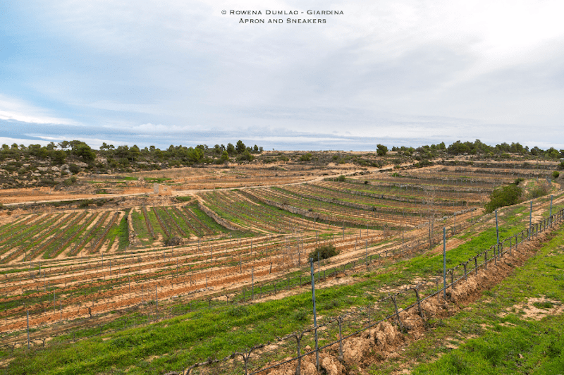 Les Garrigues: Exploring the Gastronomic Corner of Catalonia, Spain