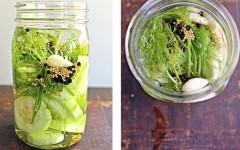 Dill-pickle-vodka-6804