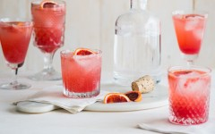 blood-orange-gin-and-tonic-recipe-1-1 (1)