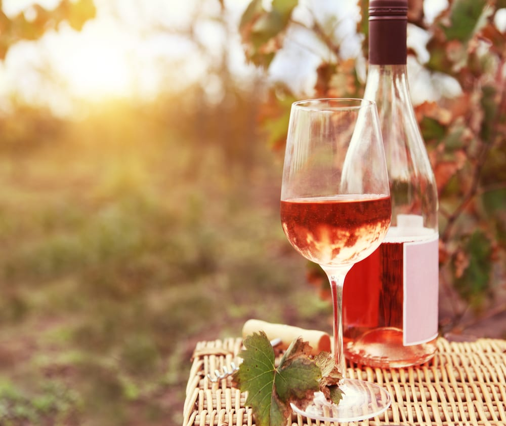 The 26 Best Summer Rosé Wines 2016