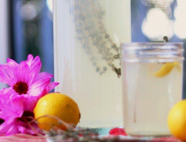 lemon-thyme-booch-2_WEB