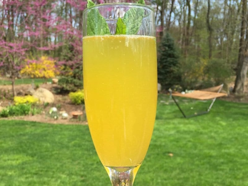 Passion Fruit and Mint Mimosas
