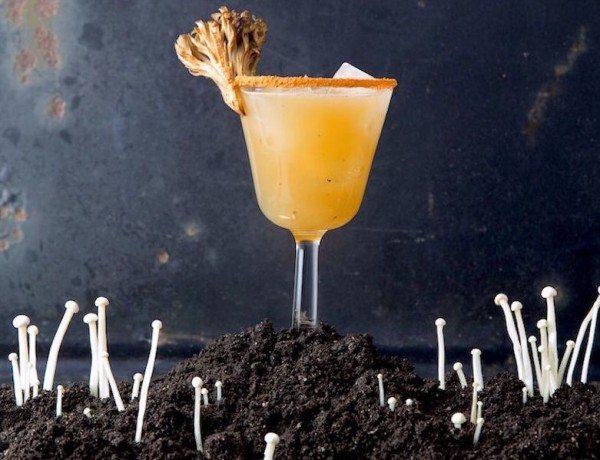 Fungus-Cocktails_2000x3000