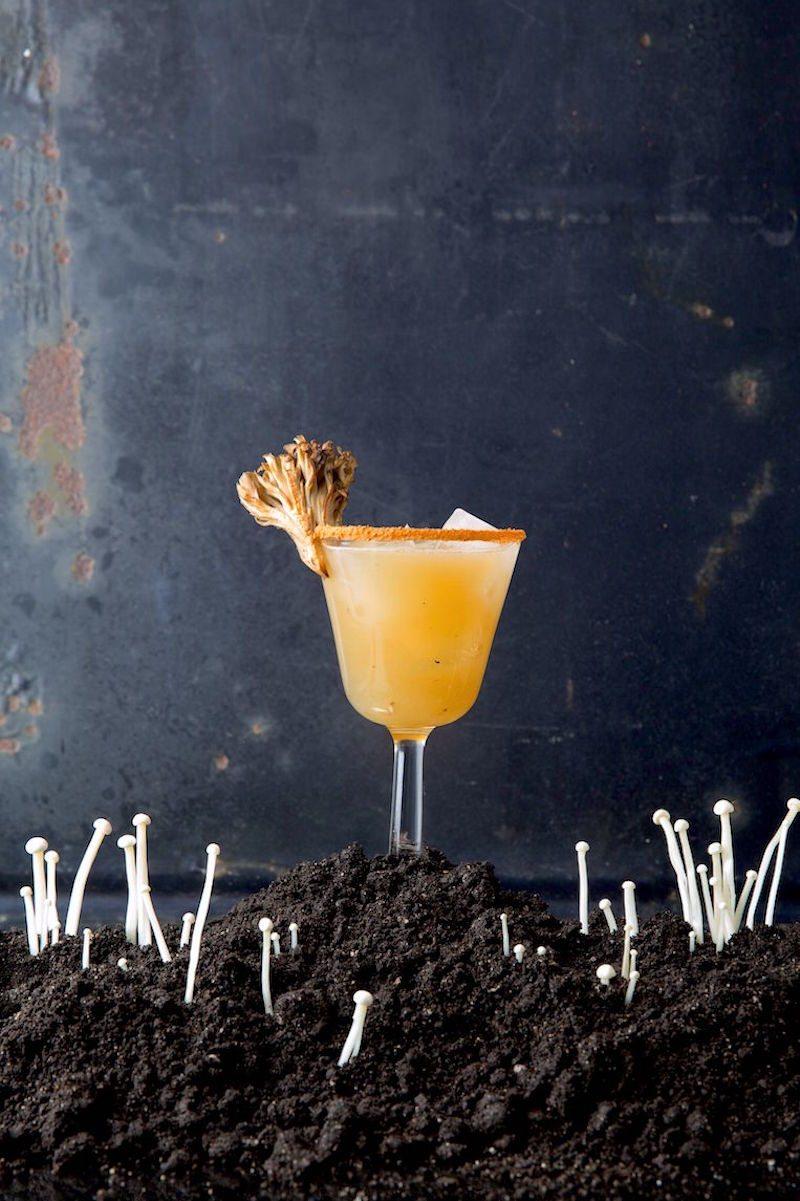 Fungus-Cocktails_2000x3000