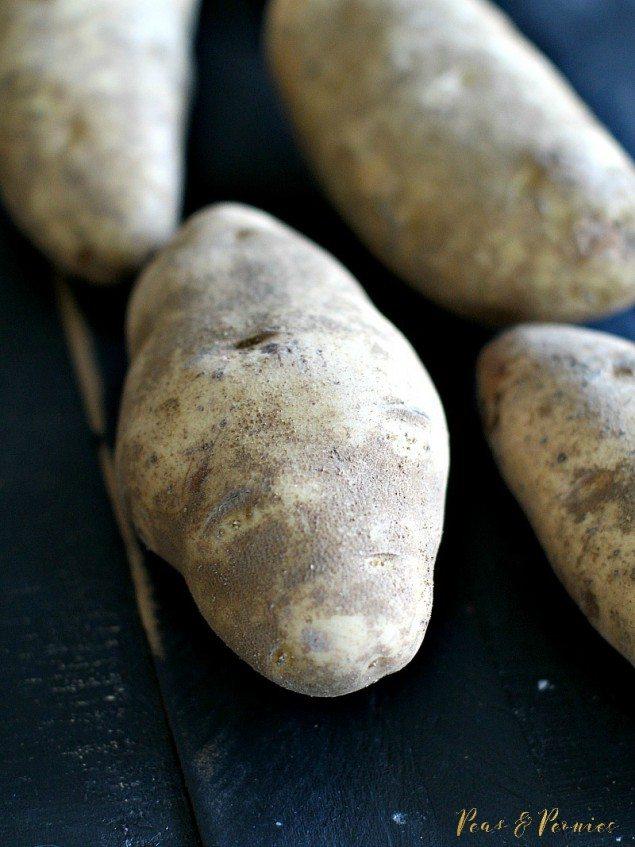Italian Béchamel Potato Gratin
