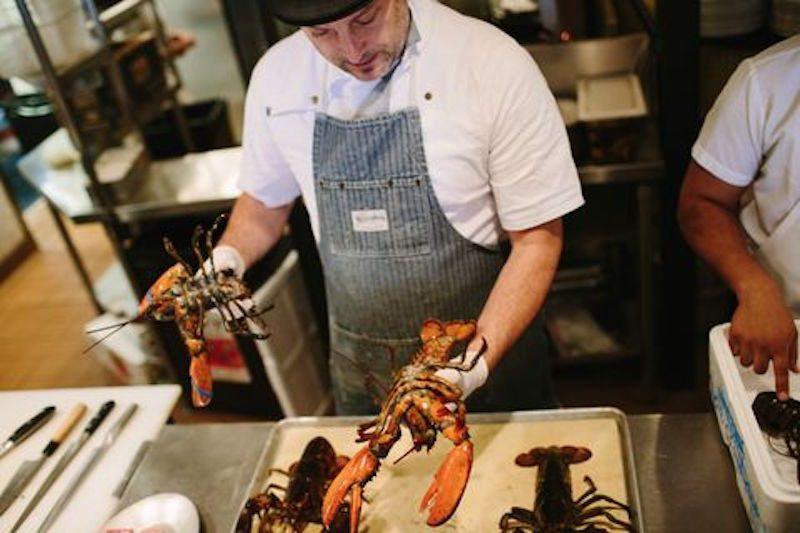 steve-lobster-courtesy-mary-costa_480x320
