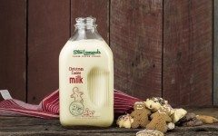 Christmas Cookie milk