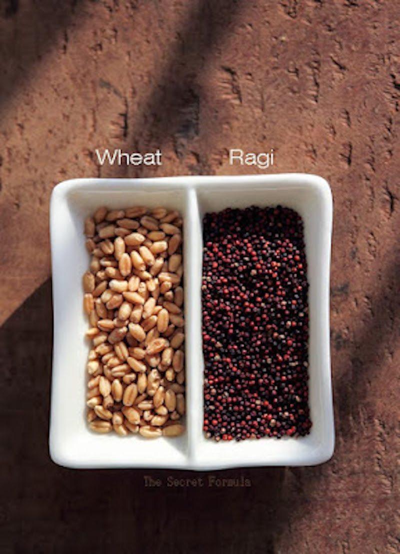 Wheat berries Ragi 2