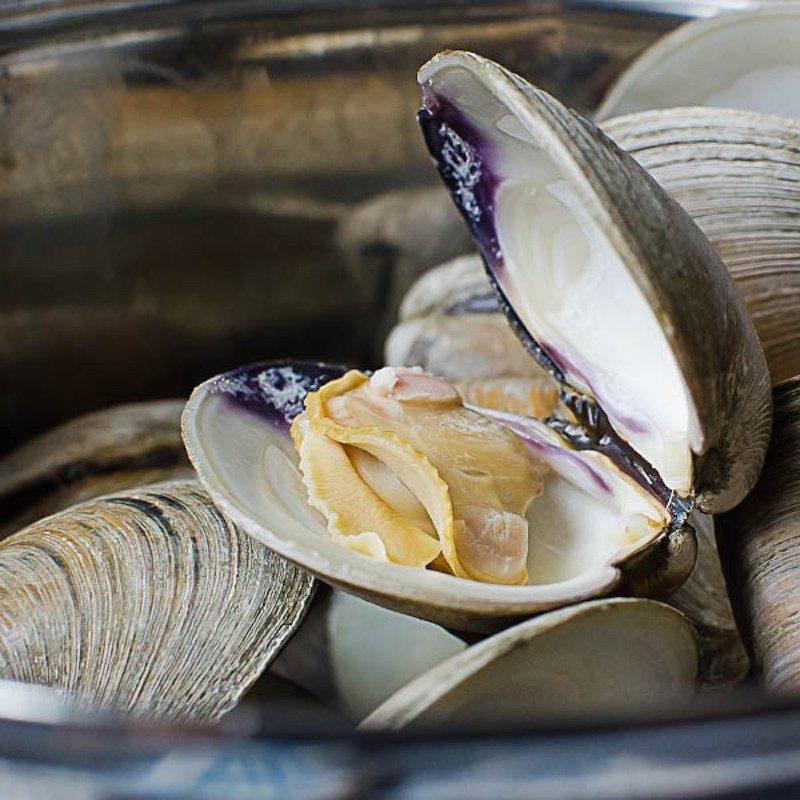 new-england-clam-chowder-3