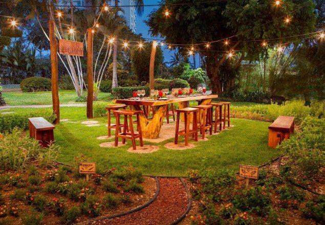 Special dinner in herb garden