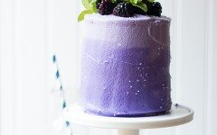 Mini-Marble-Layer-Cake-with-Blackberry-Cream-Cheese-Frosting-4661