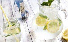 Purus Lemon Aid Horizontal